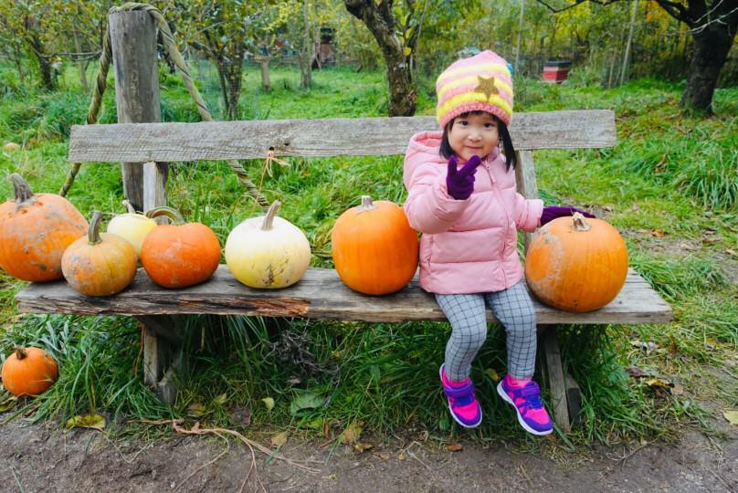 加拿大溫哥華遊記-萬聖節怎麼過(1)南瓜園、溫哥華植物園