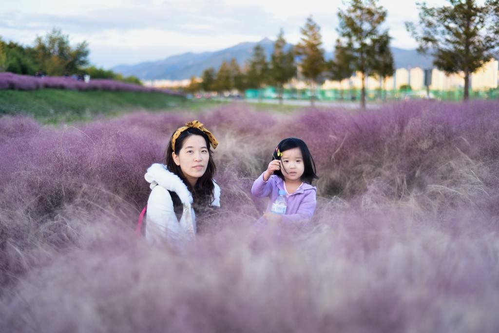 釜山-大渚生態公園