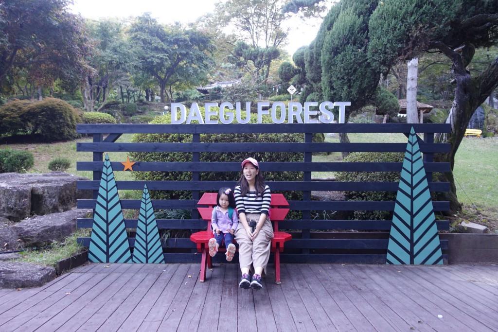【韓國親子遊】大邱—景點—森林生態主題公園、金光石路、前山觀景台、觀光巴士