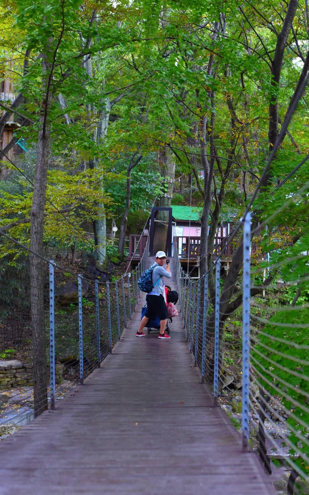 大邱-森林生態主題公園